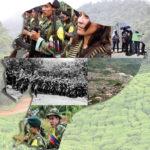 Photo Montage of Ecuador